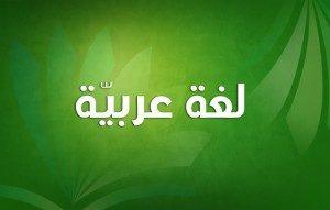 لغة عربية سنة ثالثة متوسط